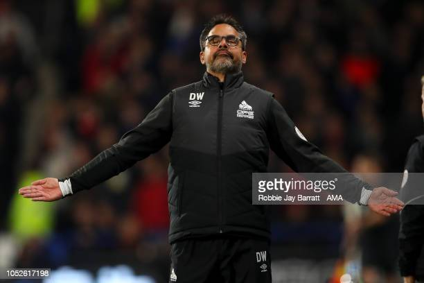 David Wagner head coach / manager of Huddersfield Town reacts during the Premier League match between Huddersfield Town and Liverpool FC at John...