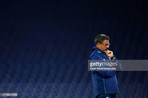 David Wagner, Manager of FC Schalke 04 looks on prior to the Bundesliga match between FC Schalke 04 and SV Werder Bremen at Veltins-Arena on...
