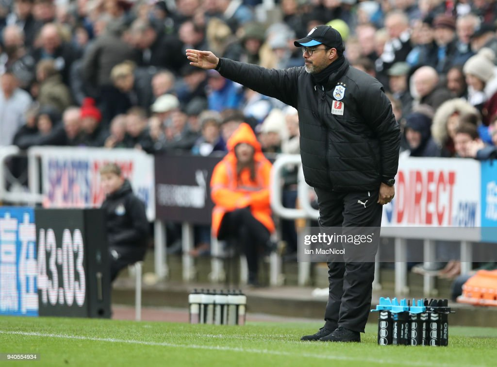 Newcastle United v Huddersfield Town - Premier League : News Photo