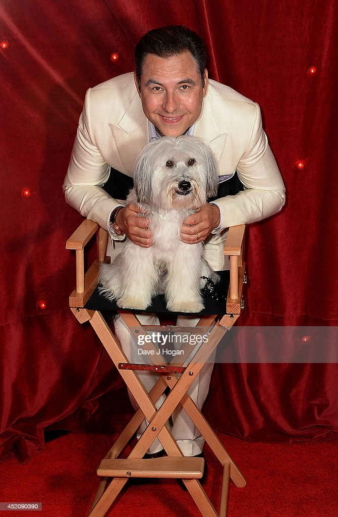 David Walliams and Pudsey attend the World Premiere of 'Pudsey The Dog: The Movie' at Vue West End on July 13, 2014 in London, England.