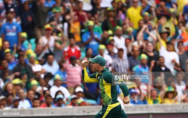 David Warner of Australia celebrates catching Ambati Rayudu of India during the One Day International match between Australia and India at Sydney...