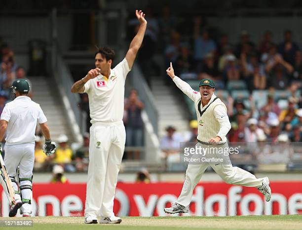 David Warner of Australia celebrates taking the run out of Hashim Amla of South Africa during day one of the Third Test Match between Australia and...