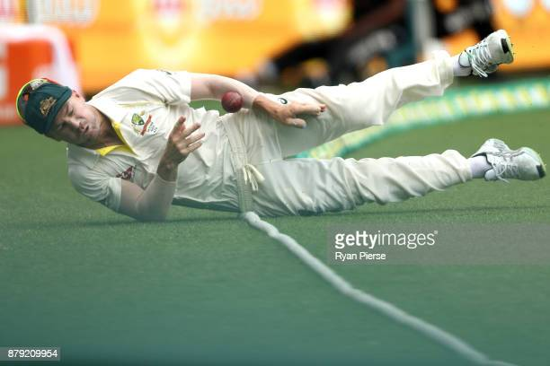 David Warner of Australia dives to field the ball during day four of the First Test Match of the 2017/18 Ashes Series between Australia and England...