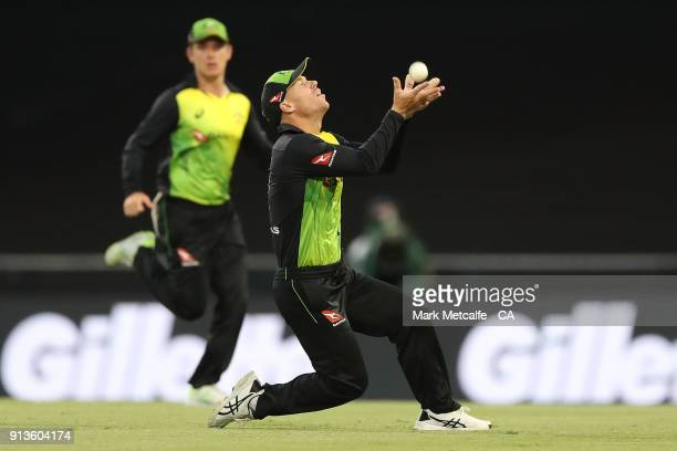 David Warner of Australia takes a catch to dismiss Kane Williamson of New Zealand during game one of the International Twenty20 series between...