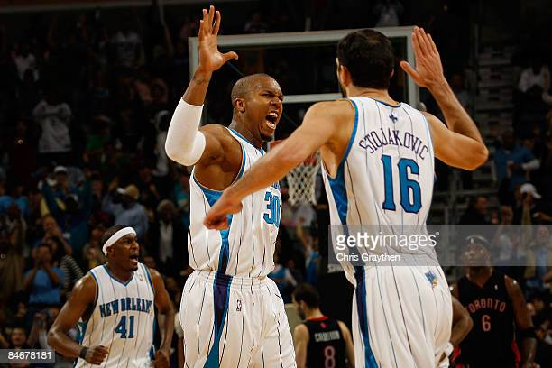 David West celebrates with Peja Stojakovic of the New Orleans Hornets after Stojakovic made a three point shot against the Toronto Raptors on...