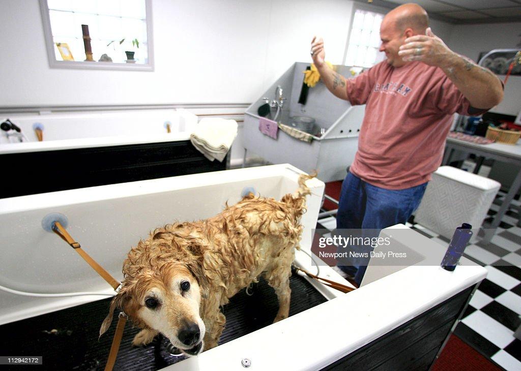 David whynot washes his 12 year old dog mandy at the dog laundry a david whynot washes his 12 year old dog mandy at the dog laundry solutioingenieria Gallery