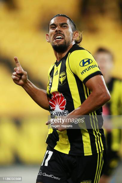 David Williams of the Phoenix celebrates after scoring a goal during the round 23 ALeague match between the Wellington Phoenix and Newcastle Jets at...