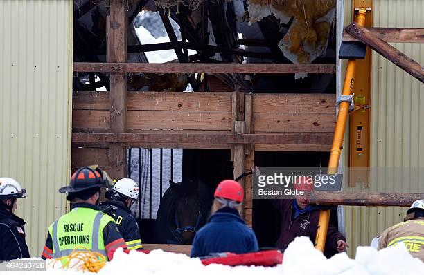 David Wilson of Reading second from right business owner of Flying High Stables gestures to firefighters as they work to cut a hole in the side of a...