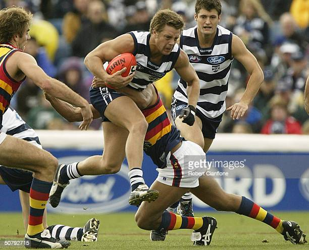 David Wojcinski of the Cats in action during the round six AFL match between the Geelong Cats and the Adelaide Crows at Skilled Stadium May 2 2004 in...