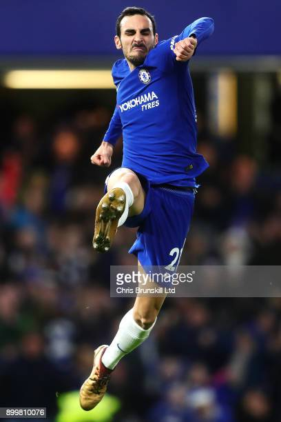 Davide Zappacosta of Chelsea celebrates scoring his side's fifth goal during the Premier League match between Chelsea and Stoke City at Stamford...