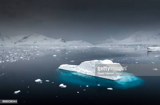 davidmerron - ice floe stock pictures, royalty-free photos & images