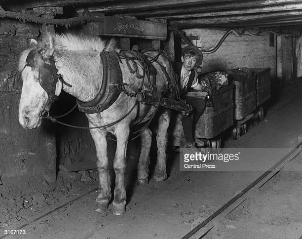 Davidson a young miner at the Lynemouth colliery of the Ashington Coal Company Davidson later became manager at the colliery after attending the...