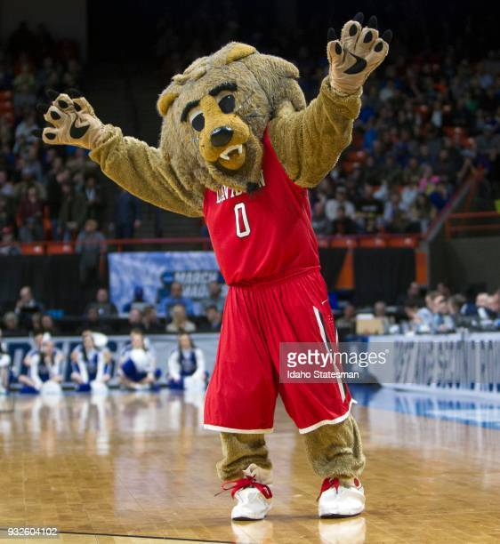 Davidson's Wildcat mascot gets fans primed during the first round of the NCAA Tournament West Regional against Kentucky at Taco Bell Arena in Boise...