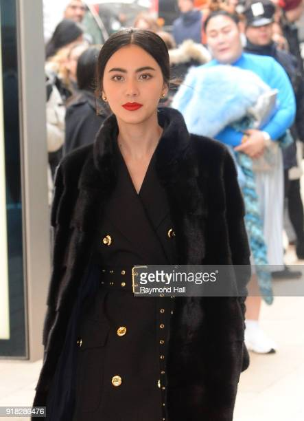 Davika Hoorne attends the Michael Kors fashion show during New York Fashion Week at the Vivian Beaumont Theater at Lincoln Centeron February 14 2018...