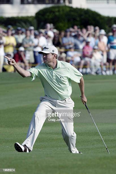 Davis Love III celebrates a chip in for birdie on the par 4 18th hole during the final round of the MCI Heritage Classic on April 20 2003 at the...