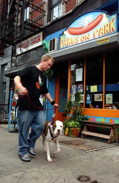 Dawgs on Park, East Village.Man walking dog.