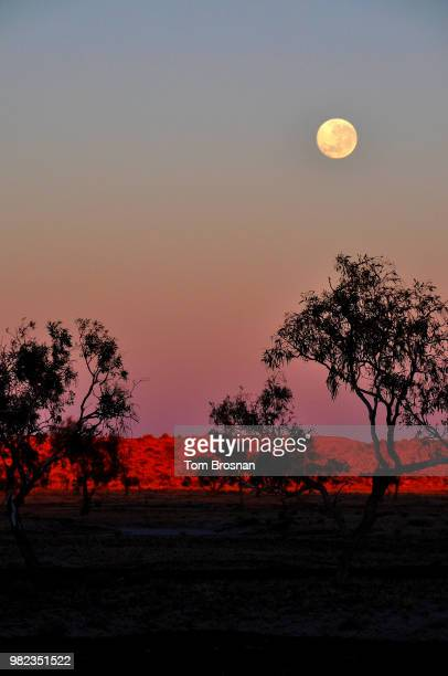 dawn at big red - moon set - brosnan stock photos and pictures