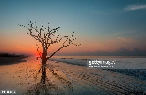 dawn at boneyard - países del golfo fotografías e imágenes de stock