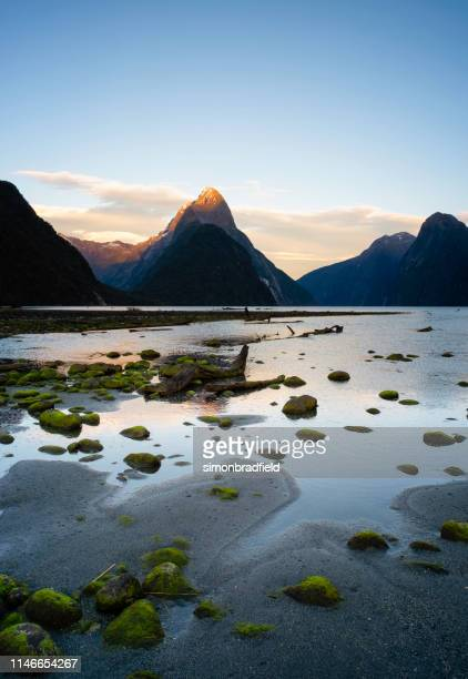dawn at milford sound, in new zealand's fiordland national park - wonderlust stock pictures, royalty-free photos & images