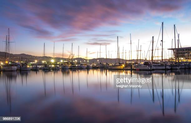 dawn at the marina - meghan stock photos and pictures