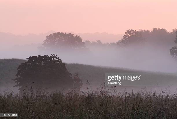 Dawn at Valley Forge National Park#1