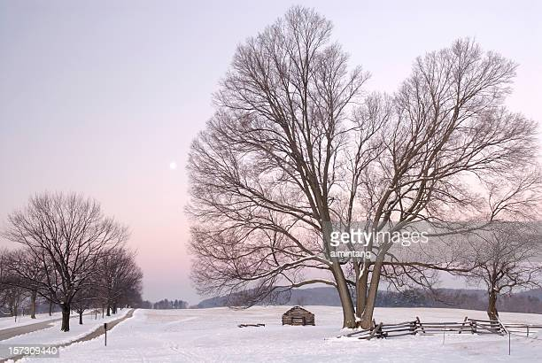 dawn at valley forge - revolutionary war stock photos and pictures