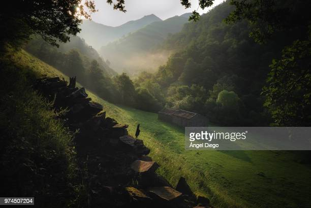 dawn at valleys of the pas, valleys of the pas and miera, cantabria, spain - カンタブリア ストックフォトと画像