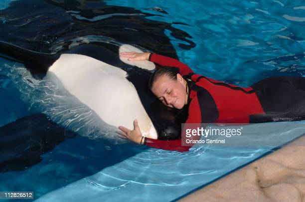 Dawn Brancheau, a whale trainer at SeaWorld Adventure Park, shown performing on December 30 was killed in an accident with a killer whale at the...