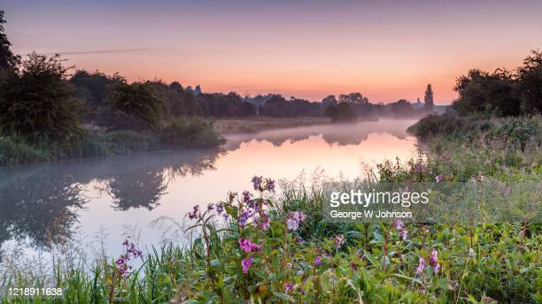 dawn burst - riverbank stock pictures, royalty-free photos & images