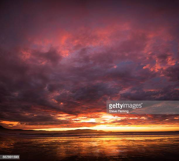 dawn, curio bay catlins new zealand - invercargill stock pictures, royalty-free photos & images