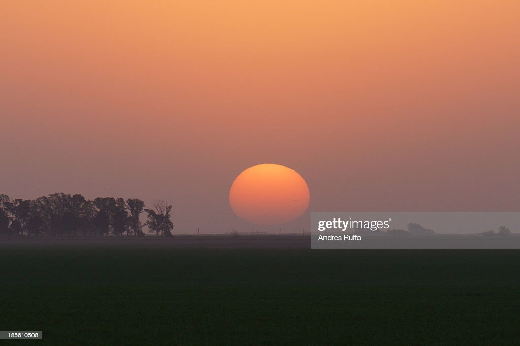 Dawn Field : Stock Photo