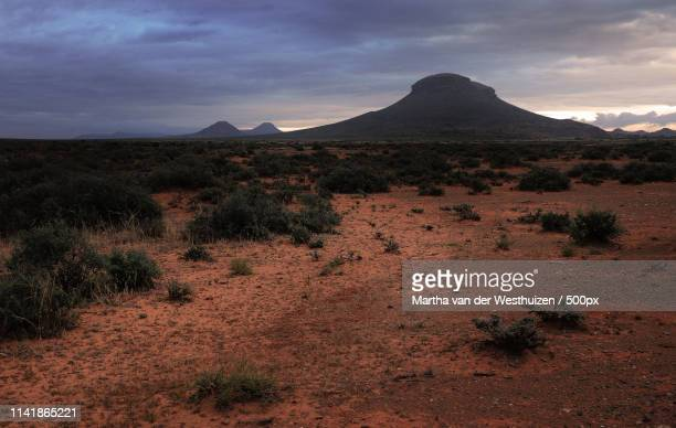 dawn in the karoo - the karoo stock pictures, royalty-free photos & images