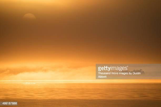 dawn inferno - dustin abbott - fotografias e filmes do acervo