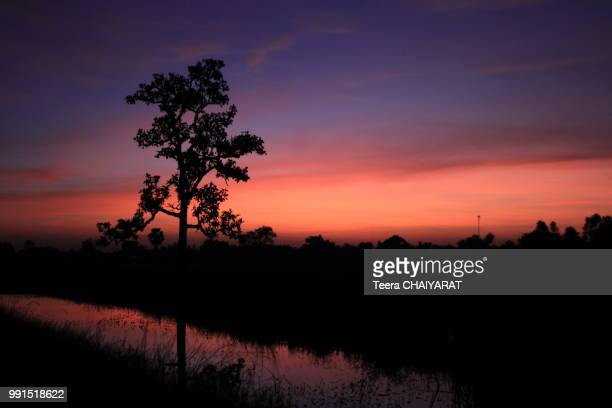 dawn light at 5.00 am - utc−10:00 stock pictures, royalty-free photos & images