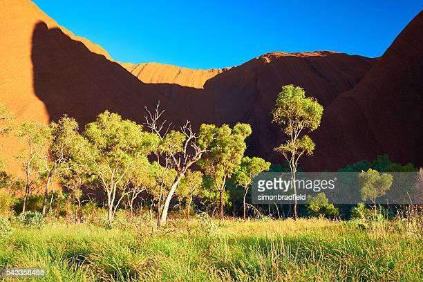 Dawn Light On Uluru
