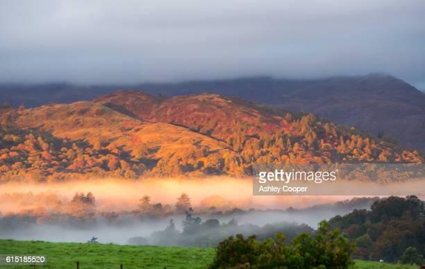 Dawn light over Black Fell near Ambleside, Lake District, Cumbria, UK.
