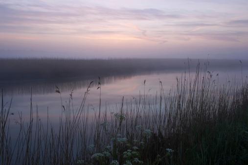 Dawn mist on the Alde 489046877