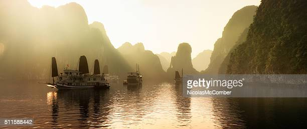 dawn on halong bay, vietnam with mist panorama - vietnam stockfoto's en -beelden