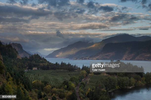 dawn on the columbia river gorge - pacific crest trail stock pictures, royalty-free photos & images