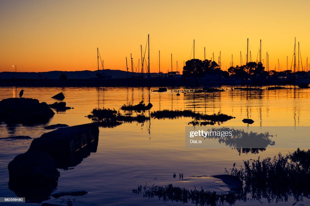 Dawn on the harbor : Stock Photo