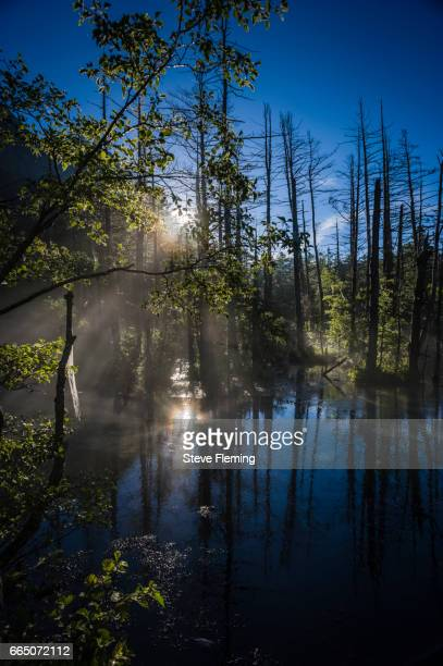 Dawn over one of the riverside pools at Kamikochi, Japanese Alps, Japan.