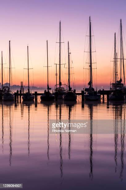 dawn over the marina - sunrise dawn stock pictures, royalty-free photos & images
