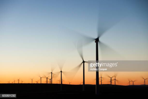 dawn over whitlee wind farm on eaglesham moor just south of glasgow in scotland, uk, is europes largest onshore wind farm with 140 turbines and an installed capacity of 322 mw, enough energy to power 180,000 homes. - motion stock pictures, royalty-free photos & images