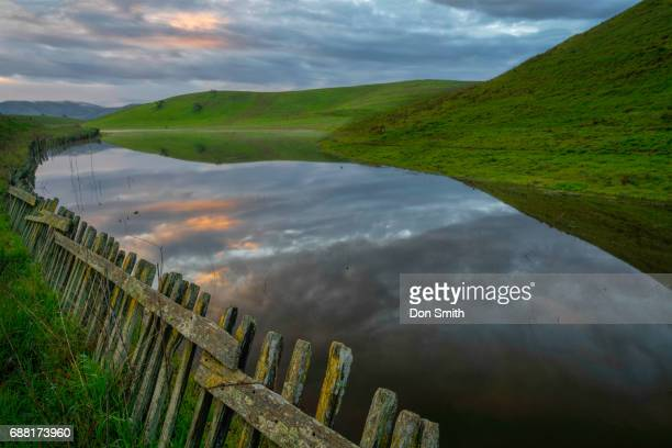dawn sky and pond - don smith stock pictures, royalty-free photos & images
