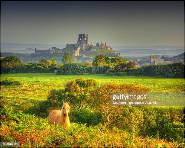 A dawn view of Corfe Castle, Isle of Purbeck, Dorset, England, United kingdom.