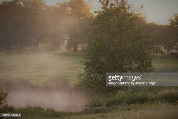 a dawn water side walk in wetland meadows of the english countryside in west sussex - national wildlife reserve stock pictures, royalty-free photos & images