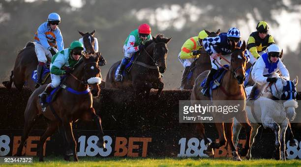 Dawson City ridden by Andrew Thornton take a flight on their way to winning the Higos Insurance Services Devon National Handicap Chase at Exeter...