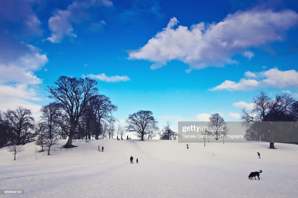 A day at the park with snow : Stock Photo