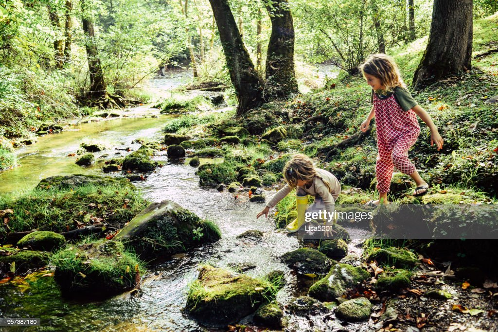Día en el río : Foto de stock