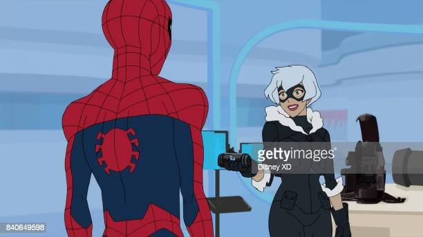 S SPIDERMAN A Day In The Life SpiderMan must stop Black Cat from committing a spree of thefts while still keeping his school obligations This episode...